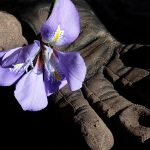 Rakentajan rukkanen -verkkotyökalu avautui Artikkelikuva
